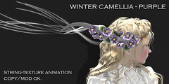 *NAMINOKE*Winter Camellia