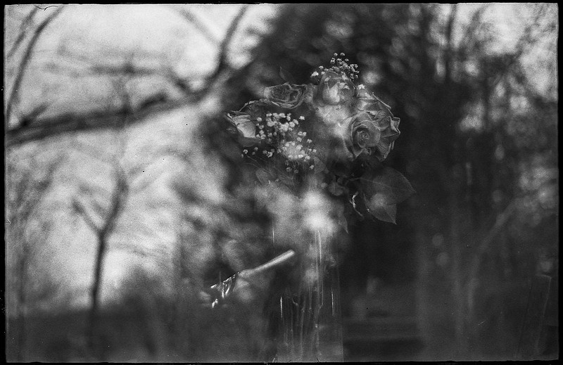 cntr window glass, looking in, floral bouquet, reflections, tree forms, home, Asheville, NC, Ansco Super Memar, Fomapan 200, Moersch Eco film developer, 12.9.20 (1 of 1)