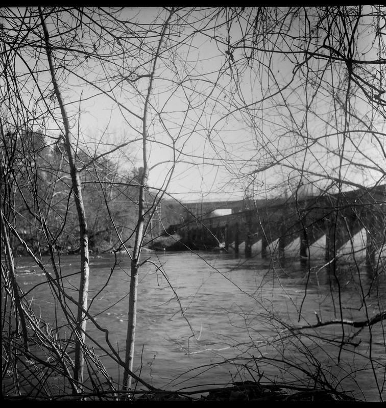 through the vines and branches,  French Broad River, railroad bridge, abandoned, Emma Road, Asheville, NC, Flektar twin lens reflex, Fomapan 200, Moersch Eco film developer, 12.13.20