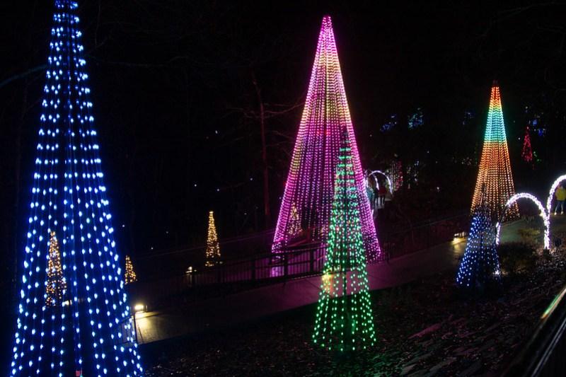 Enchanted Garden of Lights58