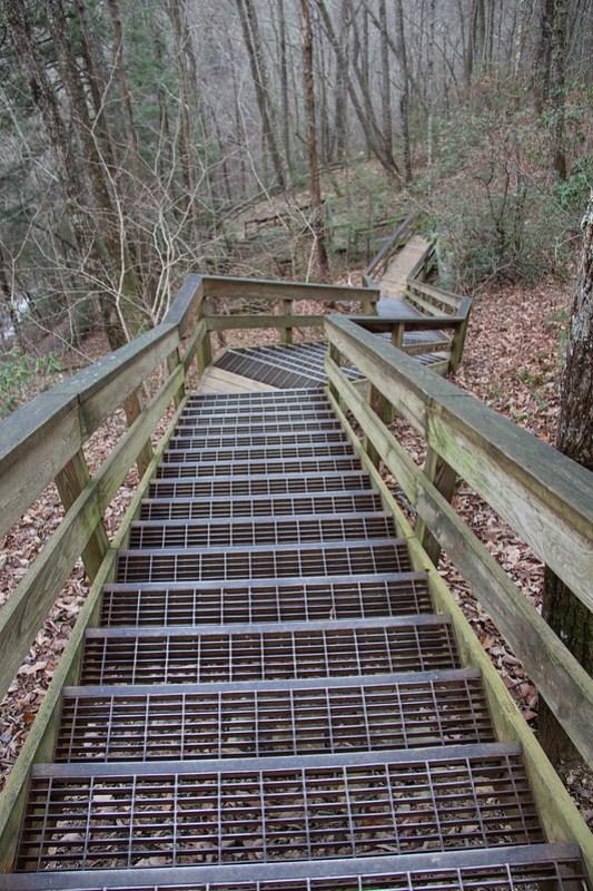Waterfall Trail17