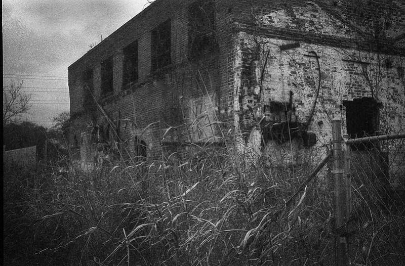urban decay, abandoned brick mill, tall grasses, winter, near dusk, river district, Asheville, NC, Kodak Bantam, Fomapan 400, HC-110 developer, 12.17.20