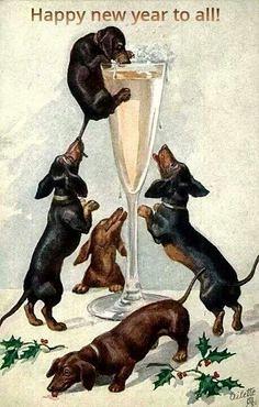 9ae96c20dcc385f2c1a641aabc420444--vintage-dachshund-dachshund-art
