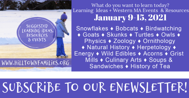 Graphic with word list of self-directed learning ideas for January 9-15, 2021. Includes a photo of a young child ice skating outdoors and an invitation to subscribe to weekly eNewsletter.
