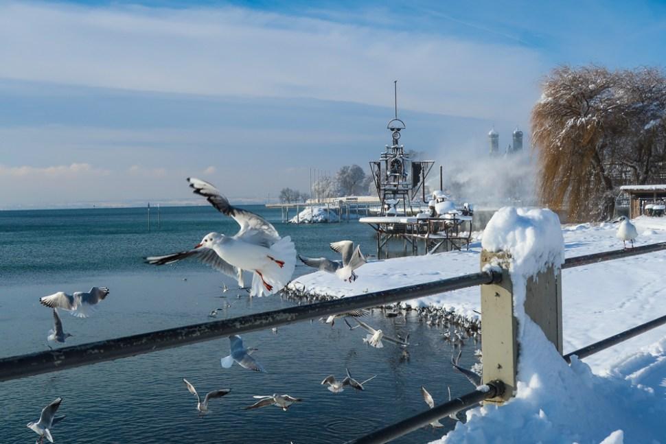 Sightseeing Walk Snow Lake Constance Friedrichshafen January 2021 Blog JoyDellaVita-33