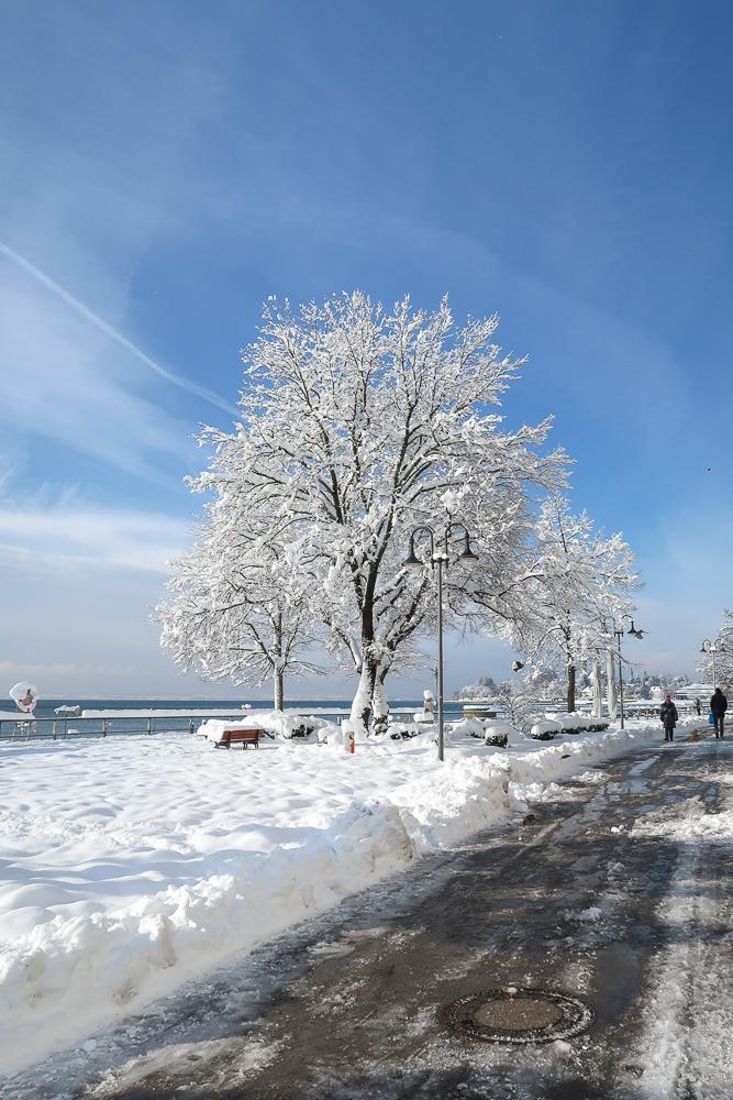 Schnee Spaziergang Friedrichshafen am Bodensee Januar 2021 hyyperlic-16