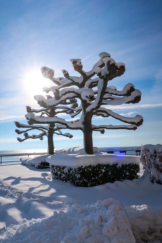 Schnee Spaziergang Friedrichshafen am Bodensee Januar 2021 hyyperlic-11