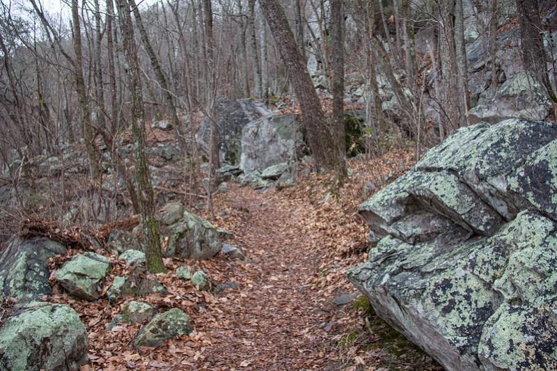 Glen Falls Trail4
