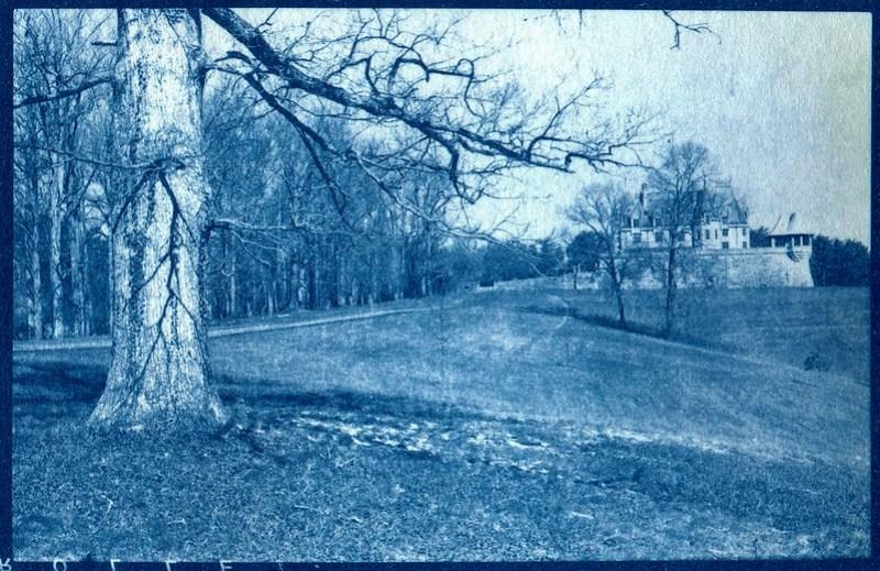 cyanotype, landscape, BIltmore Estate, Asheville, NC, 6x9 negative shot some time ago with an Ercona II medium format  folding camera