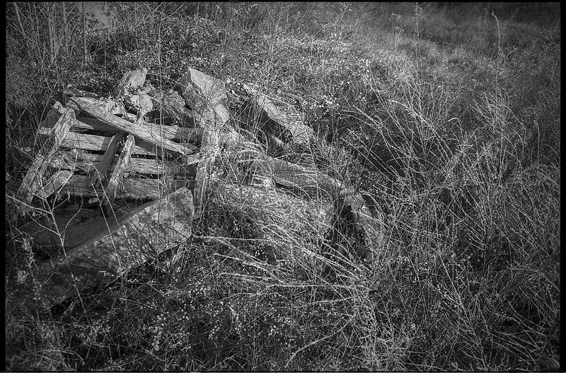 discarded stone and wood scraps, dried plant forms, winter landscape, urban decay, River District, Asheville, NC, Minolta XG-M, Super Albinon 28mm f-2.8, Fomapan 400, HC-110 film developer, 1.16.21