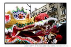 Paris Nouvel An Chinois 20100221 476