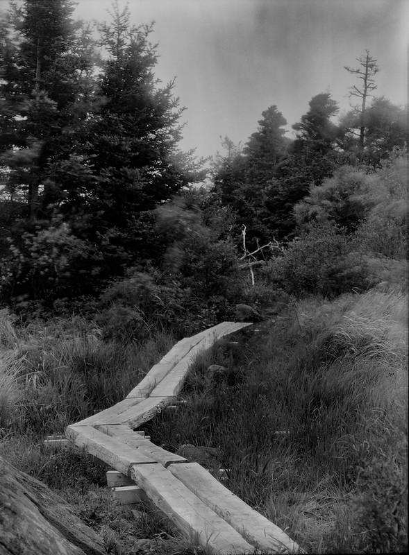 Path Planks, Monhegan Island