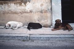 1992.02.07-4 Atenas