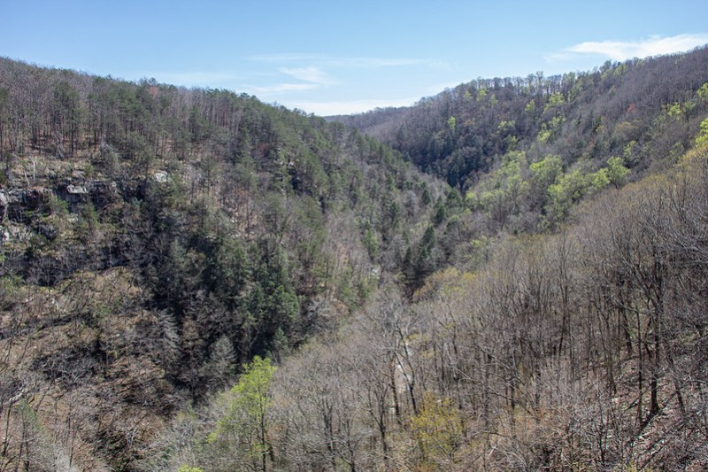 Overlook Trail_14