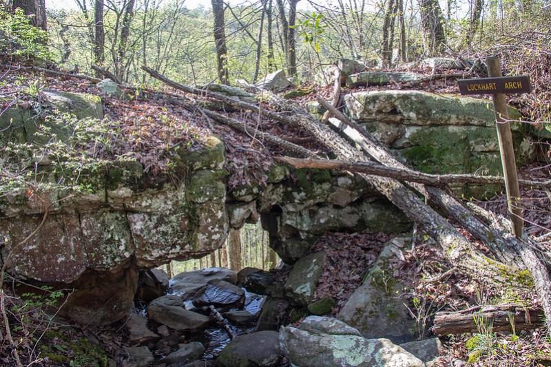Edward's Point Hike15