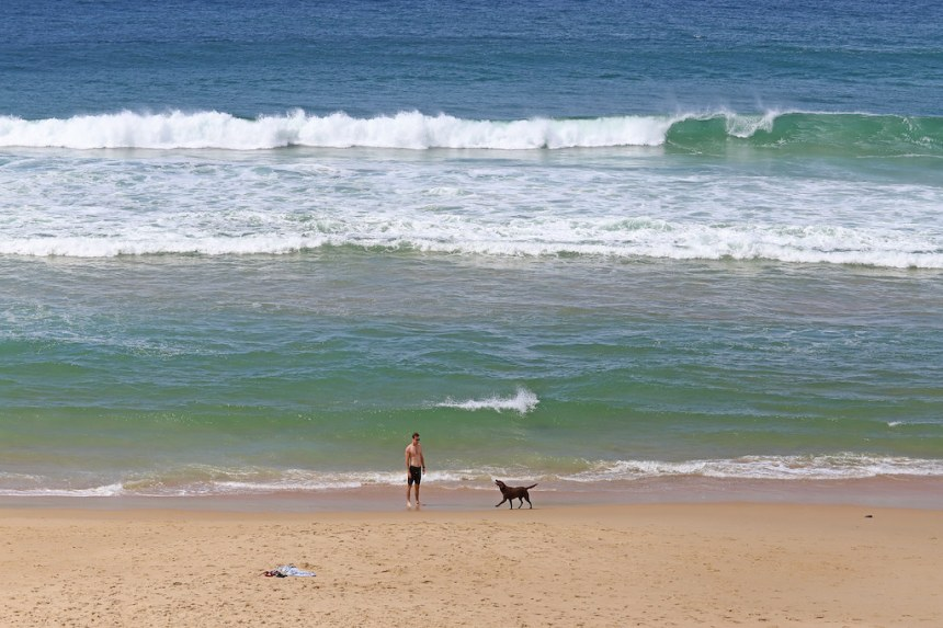 BUDDINA, SUNSHINE COAST, QUEENSLAND, AUSTRALIA :copyright: