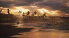 DREAMY BEACH BRAZIL