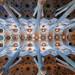 Ceiling of the Sagrada Familia in Barcelona.