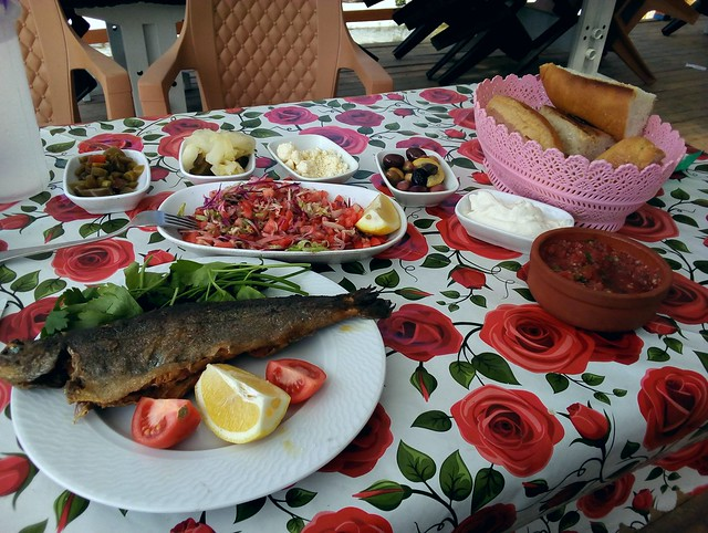 The second time I've had a fantastic lunch on a bicycle tour in Altınkaya by bryandkeith on flickr