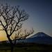 Asagiri Highlands in the morning