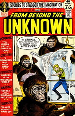 From Beyond the Unknown #14