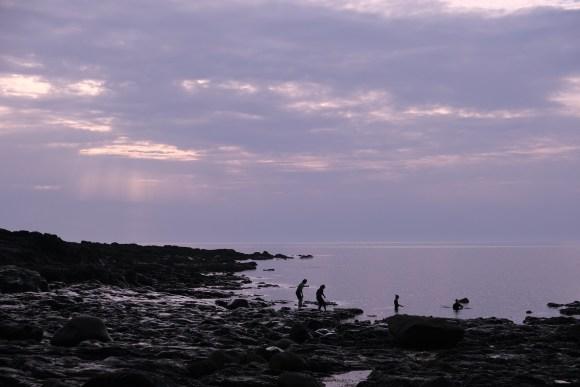 Snorkellers, Porth Ledden, Cornwall