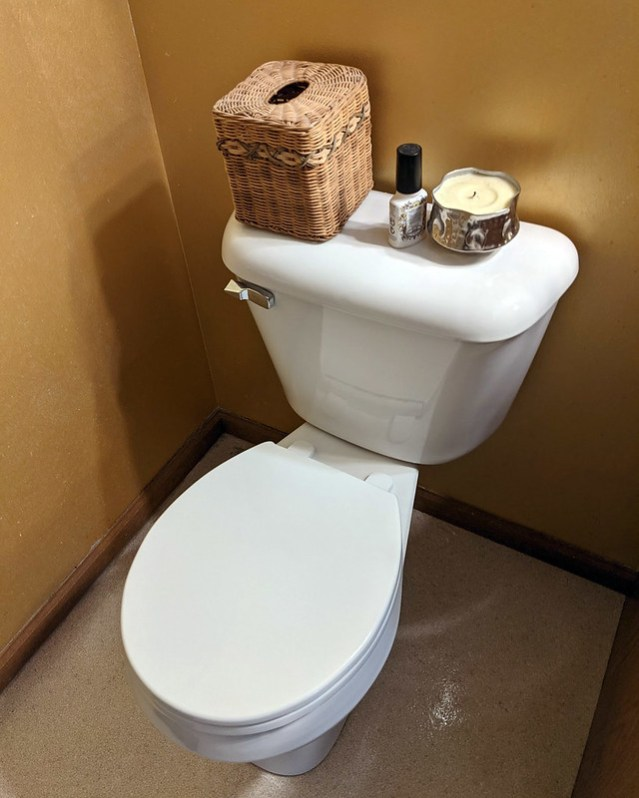 It's our new, inexpensive toilet!