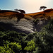 Sunlight on Castle Rock Trail