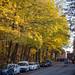 Östervägen in Autumn 1