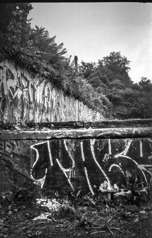 urban decay, graffitied walls, trackside, railroad district,  Asheville, NC, Goerz Pocket Roll Film Tenax camera, Fomapan 200, HC-110 developer, 8.12.21