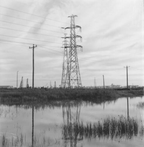 Swamp under the Westgate Bridge about 1989