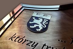 emblemat z herbem, mosiądz