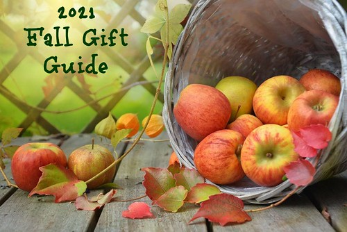 Fall Gift Guide #MySillyLittleGang