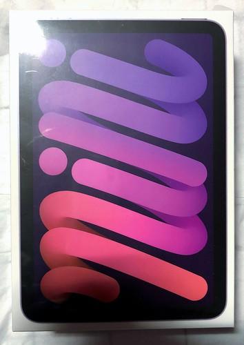 iPad Mini 6 Purple