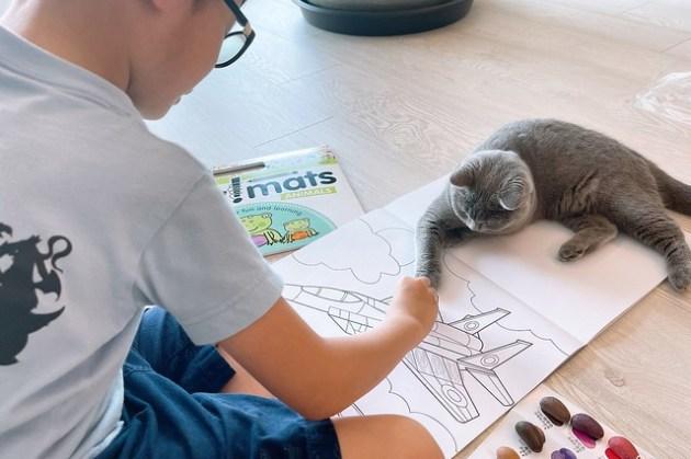 【不暗槓推薦】天然無毒幼兒畫畫用Crayon Rocks酷蠟石