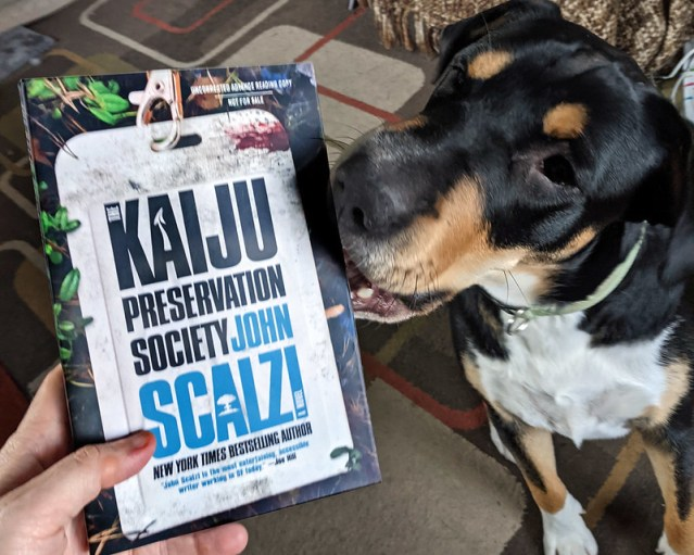 Charlie, trying to nibble on an ARC of The Kaiju Preservation Society