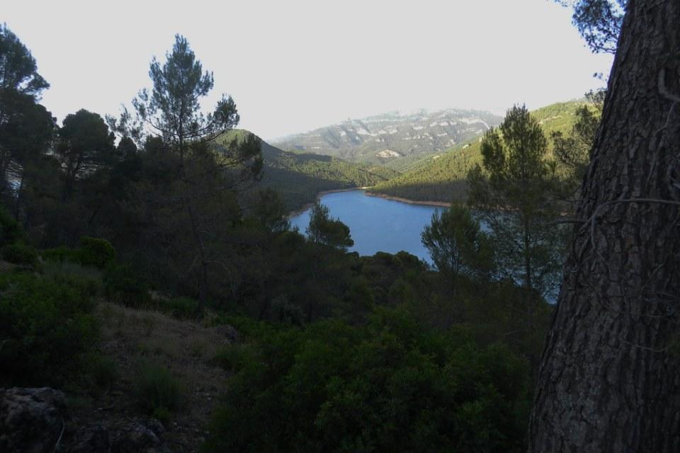 Pantano del Tranco Parque Cinegetico Jaen 05