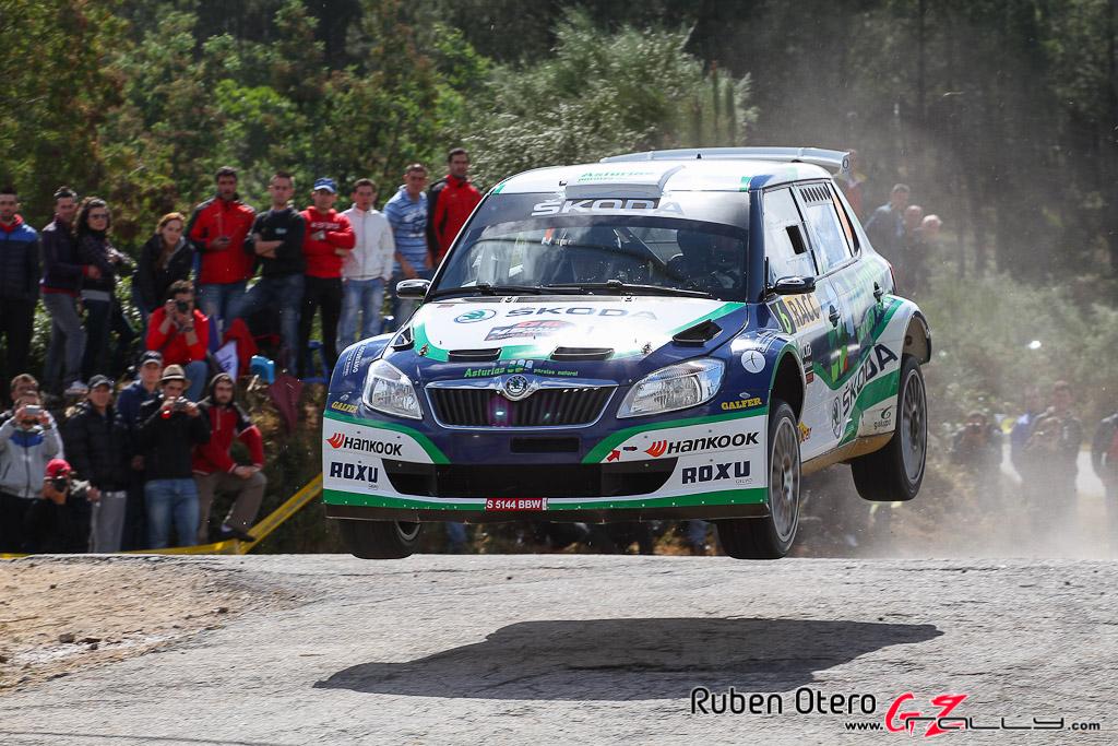 rally_de_ourense_2012_-_ruben_otero_14_20150304_1507320853