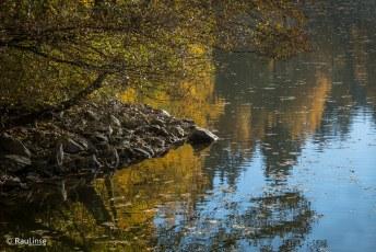 Hofer Herbst am Untreusee