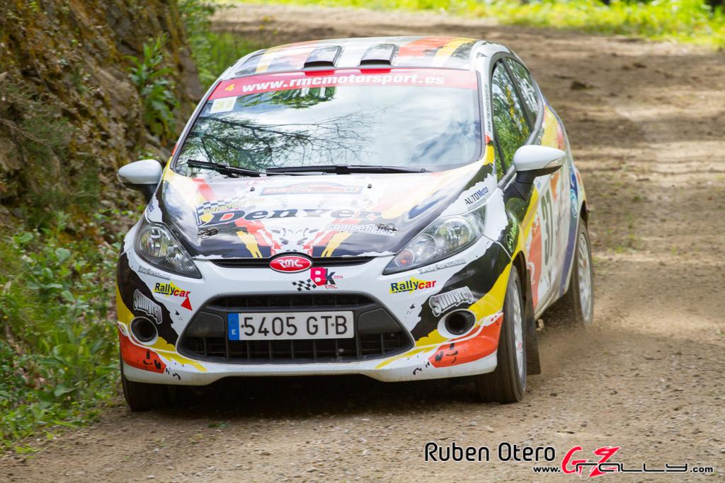 rally_de_curtis_2014_-_ruben_otero_88_20150312_1181504582
