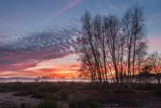 Sonnenaufgang in leichtem Nebel