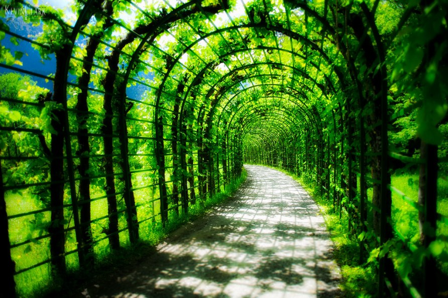 Come forth into the light of things, let nature be your teacher. - The Gardens of Schloss Linderhof