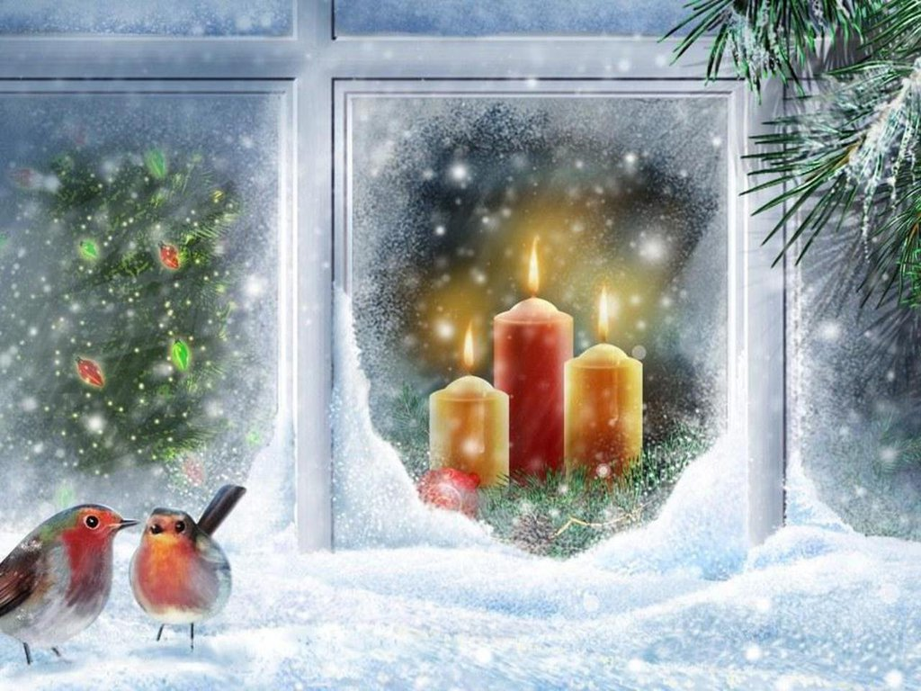 3d All Wallpaper Free Download Robin At Christmas Window Wallpaper Free Christmas Scree