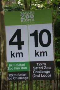 Safari Zoo Run 2012