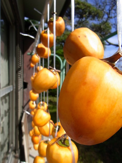 Making Dried Persimmons