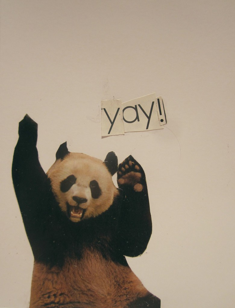 yay panda  part of zip  four my mail something every
