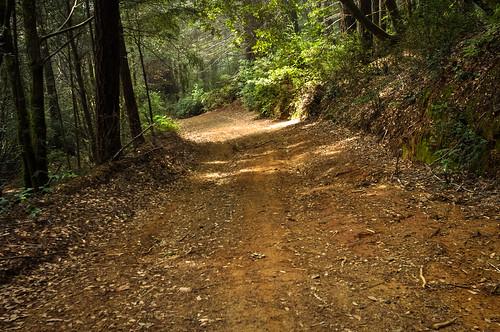 Usal Road steep downhill