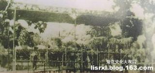 用竹木搭建 横跨河溪的花桥