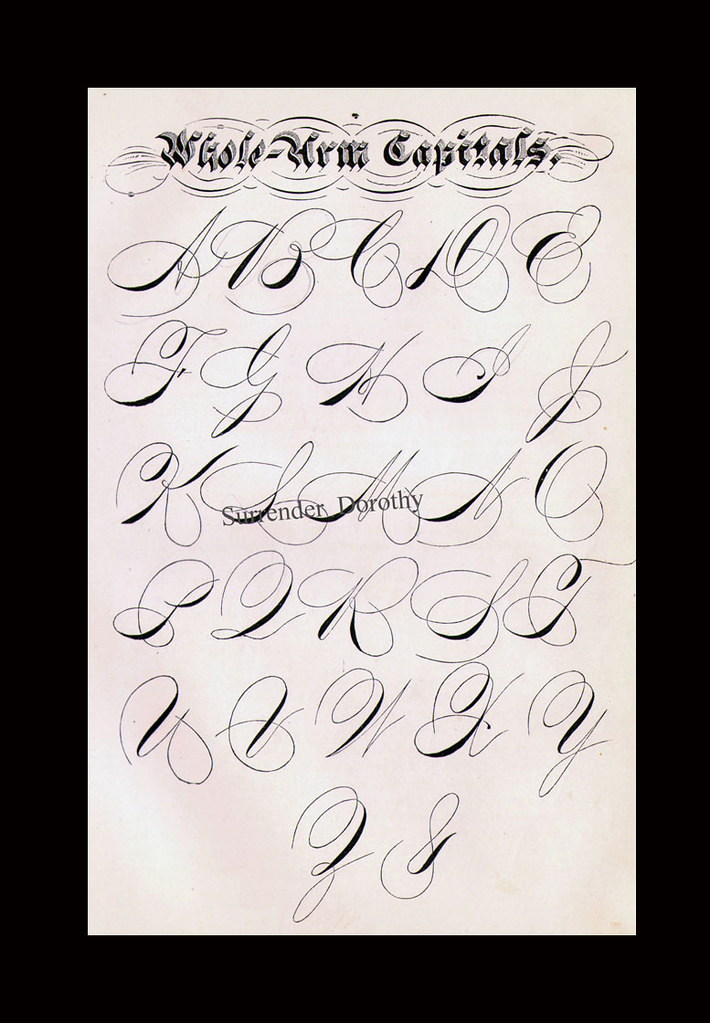 Capital S Calligraphy : capital, calligraphy, Whole, Capitals, About, Fancy, Handwriting!, Gorg…, Flickr