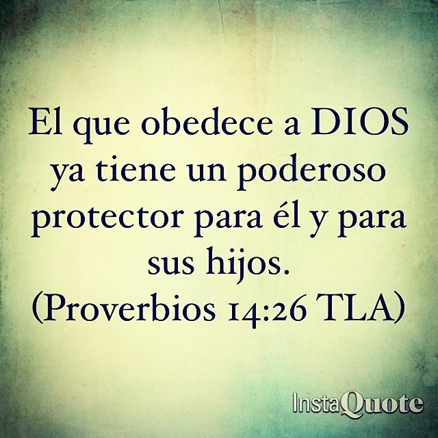 pics Proverbios 14 26 flickr